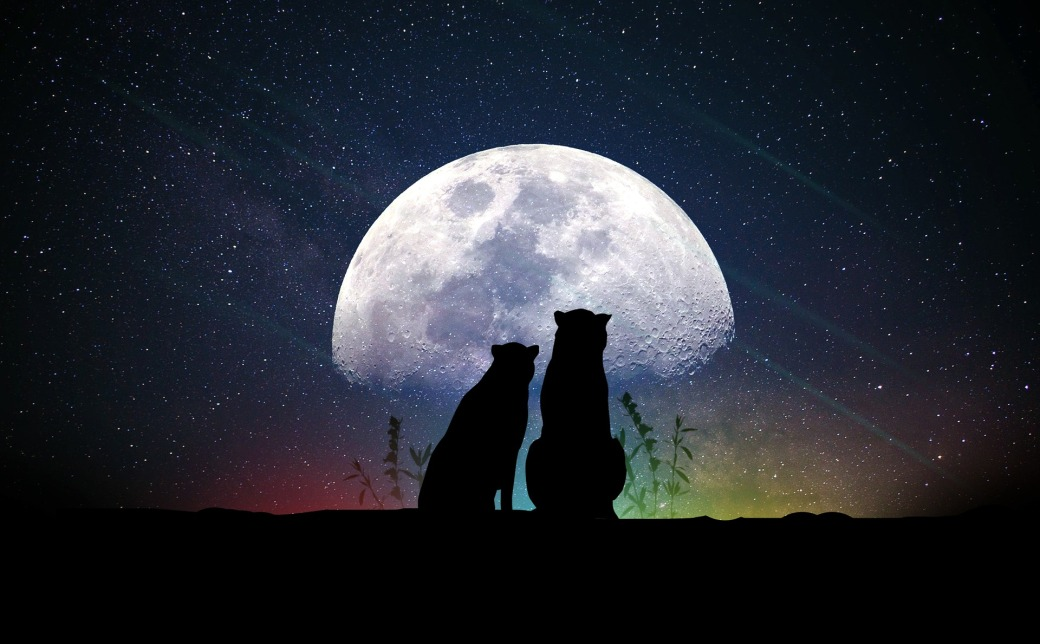 moon-3349964_1920